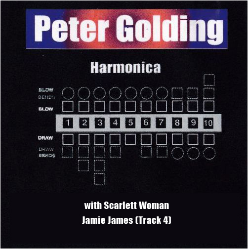 peter golding harmonica cover